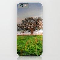 Nygren Wetlands iPhone 6 Slim Case