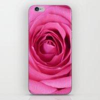 Bright Pink Rose iPhone & iPod Skin