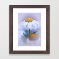 Softly Purple Framed Art Print