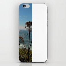 A Peek iPhone & iPod Skin