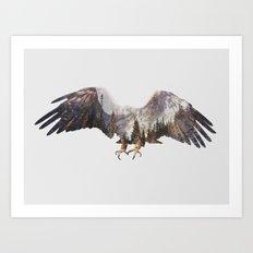 Arctic Eagle Art Print