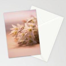 Springtime Treasures Stationery Cards