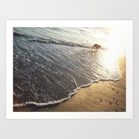 Shoreline Dog Art Print