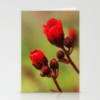 Two (red) Stationery Cards