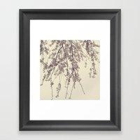 Raintree 2 Lavender pink flower blossoms Framed Art Print