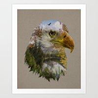 The American Bald Eagle Art Print
