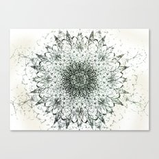 Aerial Side Effects Canvas Print
