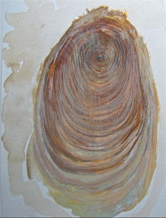 Record of Existence, Western Cedar Art Print