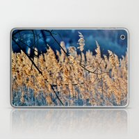 My blue reed dream - photography Laptop & iPad Skin