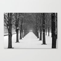 Science Trees in the Snow Canvas Print