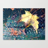 Fall in the Spider's Web Canvas Print
