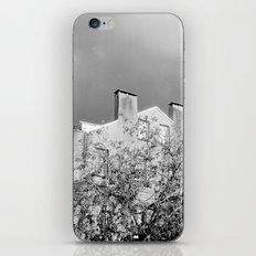 Savannah Shadows iPhone & iPod Skin