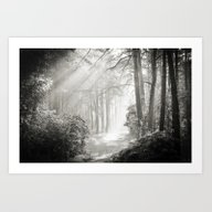 Into The Forest - Nr. 2 Art Print