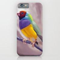 Gouldian Finch iPhone 6 Slim Case