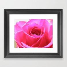 Pink Roses #3 Framed Art Print