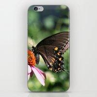 Eastern Tiger Swallowtai… iPhone & iPod Skin