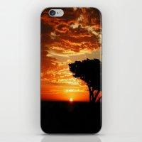 Firey Dragon  iPhone & iPod Skin