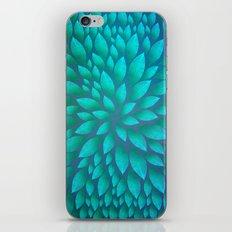Petal Burst #14 iPhone & iPod Skin