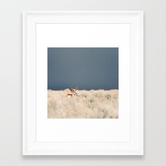 Jackson Hole Deer Framed Art Print
