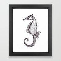 Hippocampus Abdominalis Framed Art Print