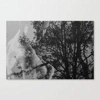 Come Undone Canvas Print