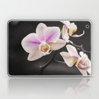Orchid Dance Laptop & iPad Skin