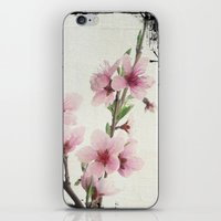 Pink Spring iPhone & iPod Skin