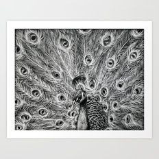 Showing Off. Art Print