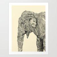 elephant Art Prints featuring Elephant by Struan Teague