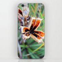 Florecer iPhone & iPod Skin