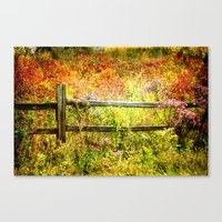 Split Rail and Fall Textures Canvas Print