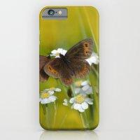 Summery Butterflies on Gold iPhone 6 Slim Case