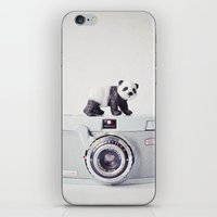 The Panda and The Ikonette iPhone & iPod Skin