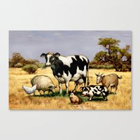 In the Pasture Canvas Print