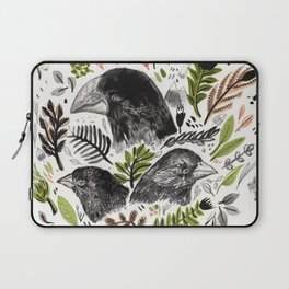 Laptop Sleeve - DARWIN FINCHES - Sandra Dieckmann