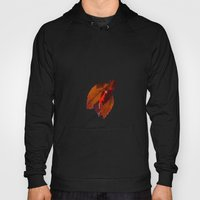Autumn is in the Air Hoody