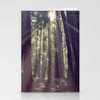 Redwoods Hike Stationery Cards