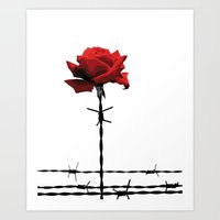 Barbed Wire Red Rose Art Print