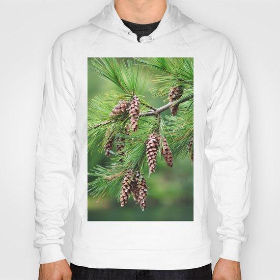 Pine cones Hoody
