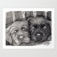 Flat Coat Retrievers Art Print