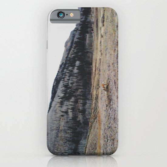 Silverton Fox iPhone & iPod Case