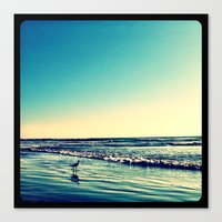 Bird on the water. Canvas Print