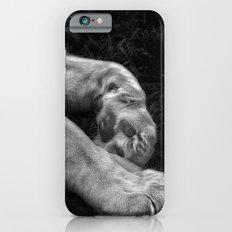 Paw iPhone 6s Slim Case