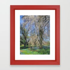 Weeping Cherry Framed Art Print