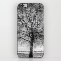 The Ghostly Farm iPhone & iPod Skin