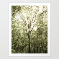 Branches Of Life Art Print