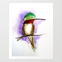 Hummingbird A Art Print