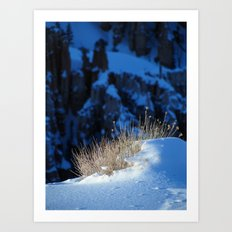 Bryce Canyon Chill Art Print