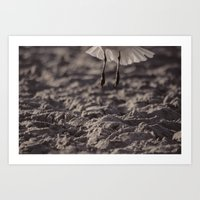Fly Away -- Low angle view in smoky sepia Art Print