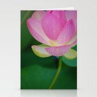 Lotus Blossom Flower 30 Stationery Cards